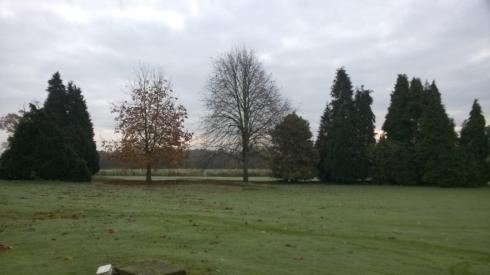 Run run run in the countryside